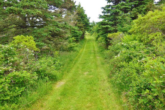 <Alttext/> of Chebogue Point, Nova Scotia, Canada