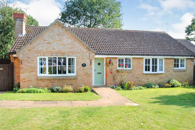 Thumbnail Detached bungalow for sale in Walnut Close, Hopton, Diss