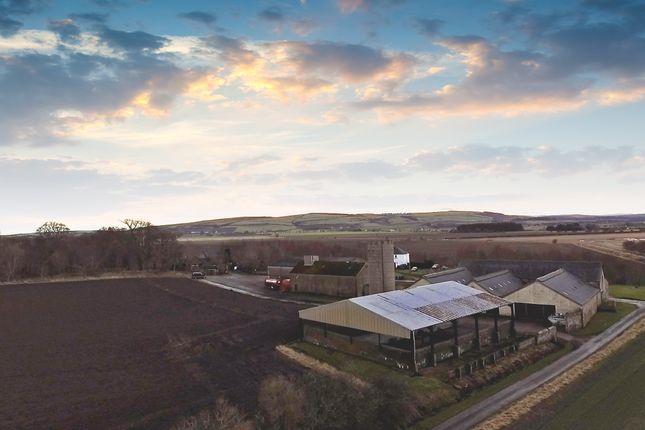 Thumbnail Farm for sale in Balinroich Farm, Fearn