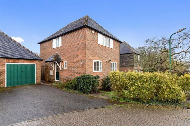 Thumbnail Detached house for sale in Dennes Mill Close, Wye, Ashford