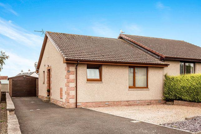 Thumbnail Bungalow for sale in St. Brioc Way, Ferryden, Montrose