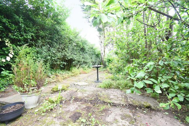 Sandy Lane Garden Dsc_9079 Ret