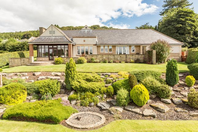 Thumbnail Detached bungalow for sale in Daleview, 30 Holywood, Wolsingham, County Durham