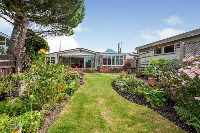 Thumbnail Detached bungalow for sale in Thames Meadow, Shepperton
