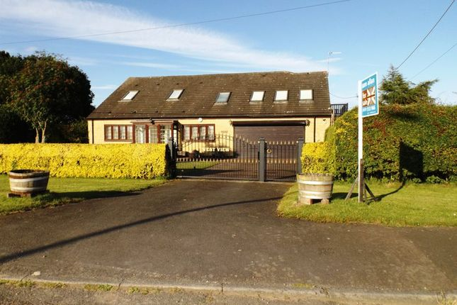 Thumbnail Bungalow for sale in Station Road End, Stannington, Morpeth