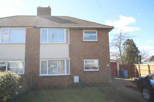 Thumbnail Semi-detached house to rent in Tranmere Grove, Ipswich