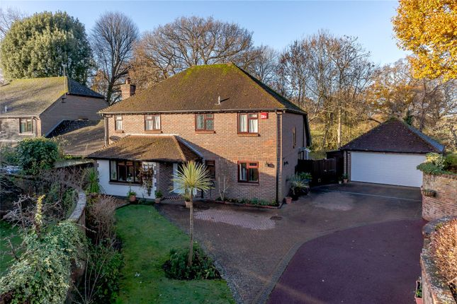 Thumbnail Detached house for sale in Plainwood Close, Chichester, West Sussex