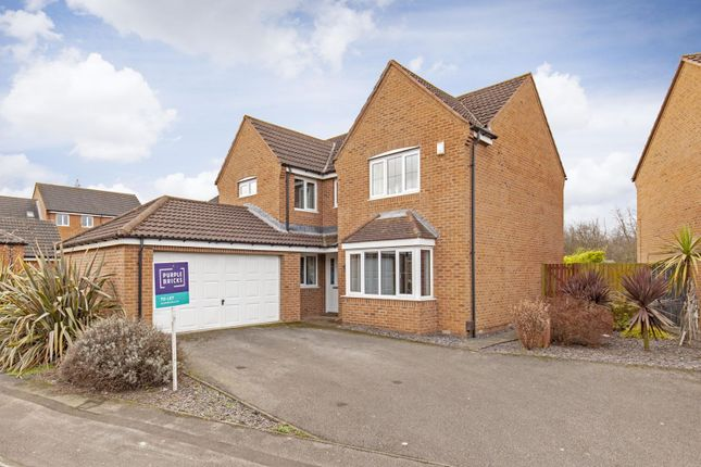 Thumbnail Detached house to rent in Kingfisher Drive, Barnsley