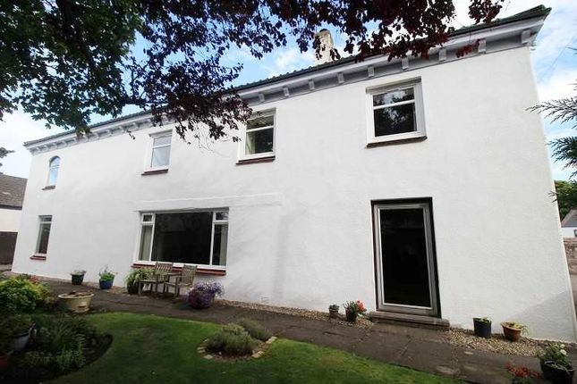 Thumbnail Detached house for sale in Warrack Terrace, Montrose, Angus