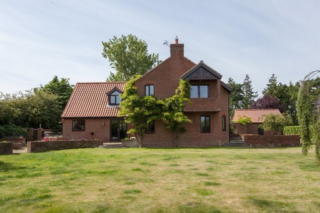 Thumbnail Detached house for sale in Fakenham Road, Great Witchingham, Norwich