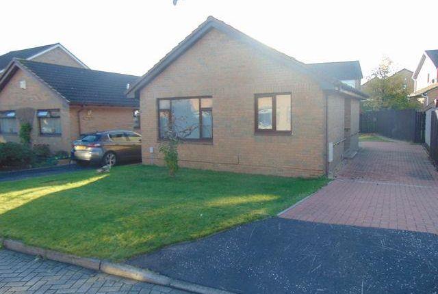 Thumbnail Bungalow to rent in Swinton View, Baillieston, Glasgow
