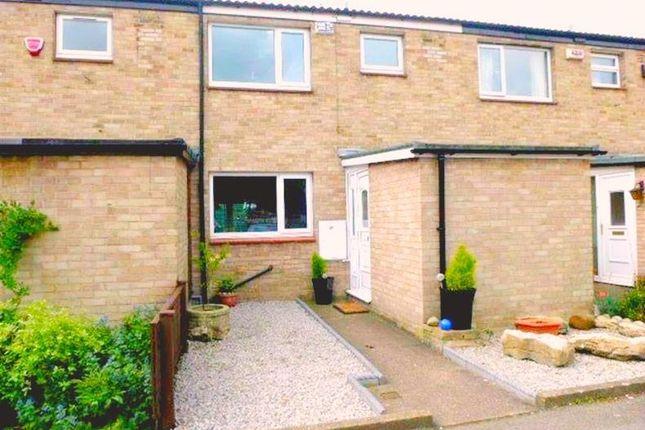 Thumbnail Property to rent in Acacia Drive, Hull