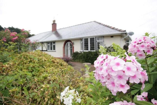 Thumbnail Bungalow to rent in Min-Y-Nant, Rhiwbina, Cardiff