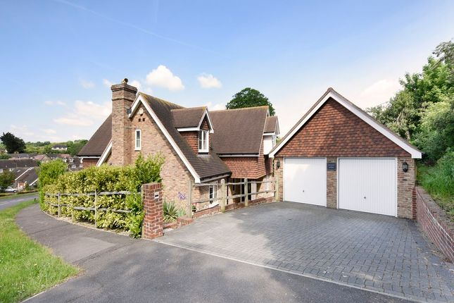Thumbnail Detached house for sale in Elm Rise, Findon, Worthing