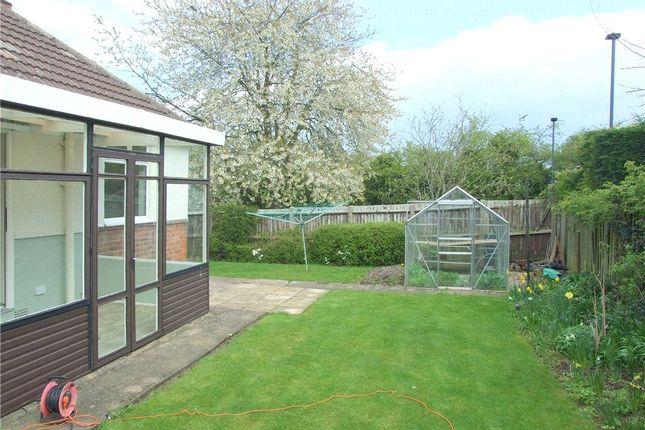 Garden of North Avenue, Darley Abbey, Derby DE22