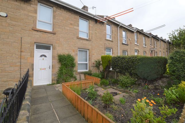 Thumbnail Terraced house to rent in Lime Street, Blaydon-On-Tyne