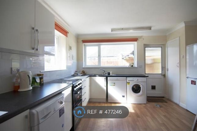 Thumbnail Bungalow to rent in London Road, Cowplain, Waterlooville