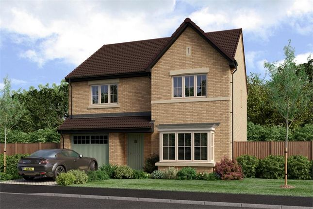 """Thumbnail Detached house for sale in """"The Chadwick"""" at West Lane Cottages, Longframlington, Morpeth"""
