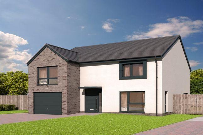 Thumbnail Detached house for sale in The Jardine Devongrange, Sauchie, Alloa, Clackmannanshire