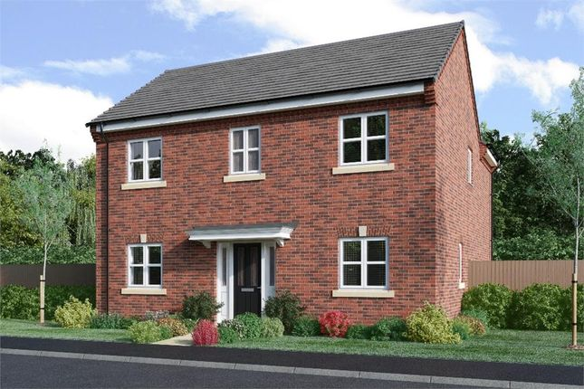 """Thumbnail Detached house for sale in """"Wells"""" at Hemsworth Road, Sheffield"""