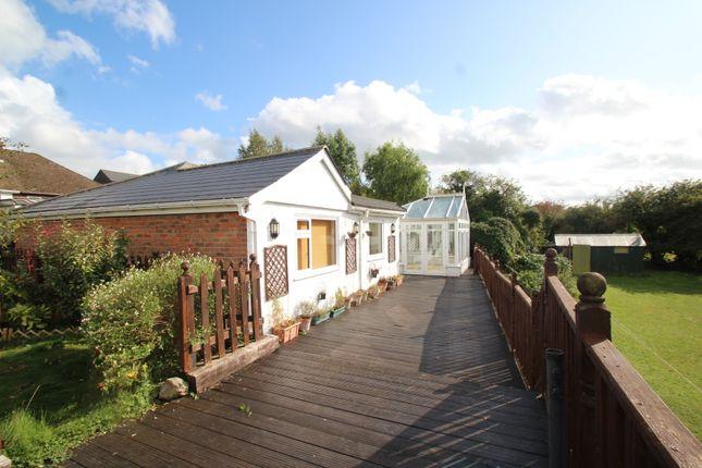 Thumbnail Detached bungalow to rent in Ash Road, Orpington