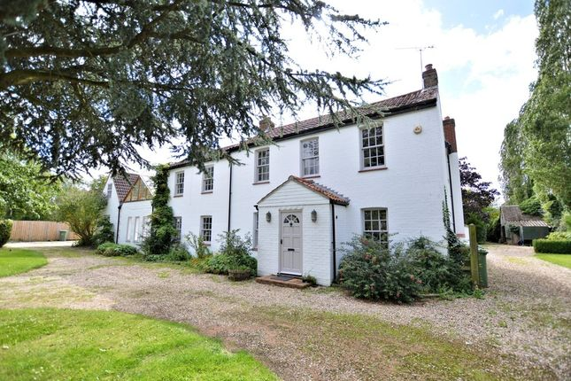 Thumbnail Detached house to rent in Stone Road, Mattishall, Dereham