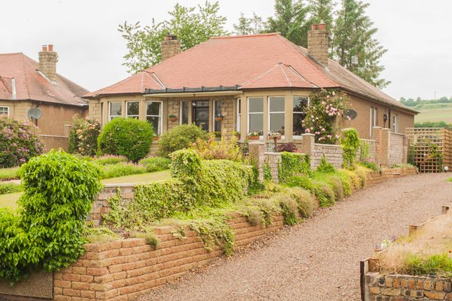Thumbnail Bungalow for sale in Marchmont Road, Greenlaw, Scottish Borders