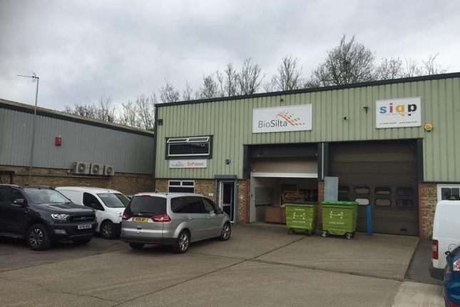Thumbnail Office to let in 8 Bramley Road, St Ives, Cambridgeshire
