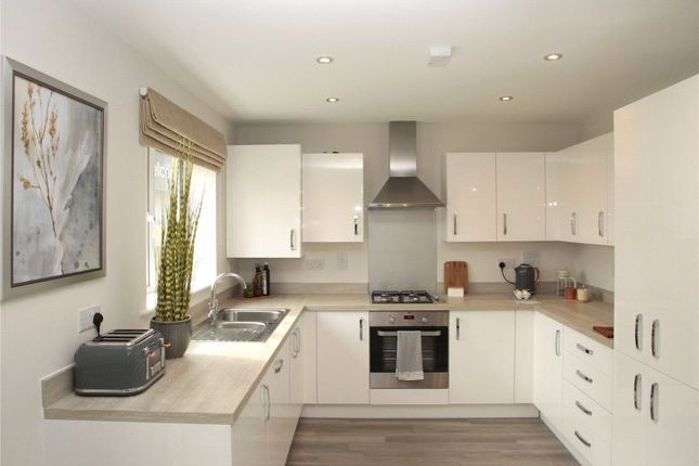 Thumbnail Bungalow for sale in The Grove, Rockmill End, Willingham, Cambridgeshire