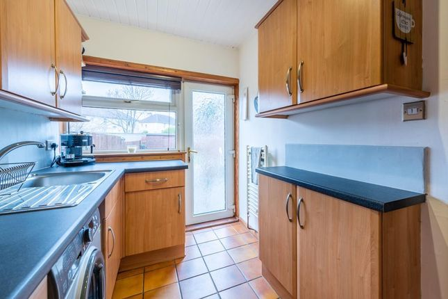 Lev0932Smg Kitchen