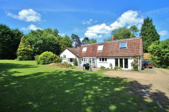 Thumbnail Detached house to rent in Tolhurst Lane, Wallcrouch, Wadhurst