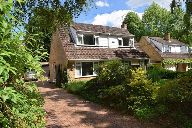 Thumbnail Detached house for sale in Nightingale Road, Normandy, Guildford, Surrey