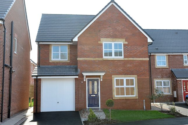 "Thumbnail Detached house for sale in ""The Roseberry"" at Cottonwood Close, Bamber Bridge, Preston"
