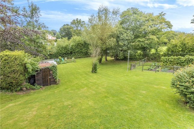 Garden of Smallridge, Axminster, Devon EX13