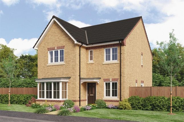 """Thumbnail Detached house for sale in """"Mitford"""" at Bevan Way, Widnes"""