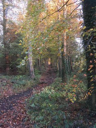 Thumbnail Land for sale in Low Brunton, Hexham