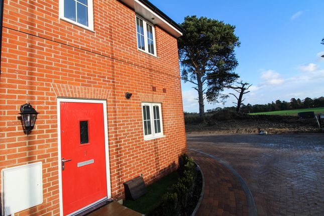 Thumbnail Semi-detached house for sale in Yarrow Walk, Red Lodge, Bury St. Edmunds