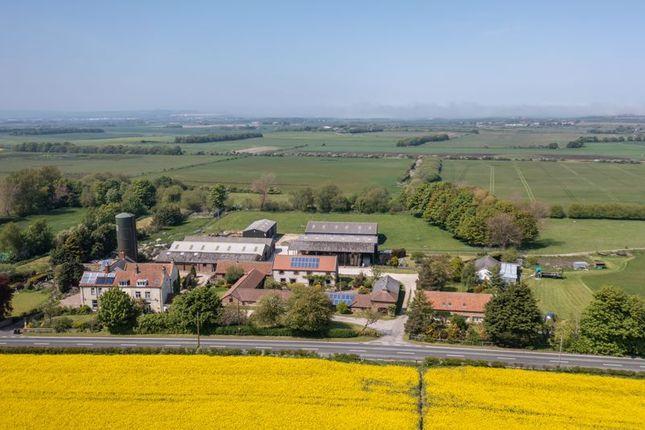 Thumbnail Farm for sale in Flotmanby Lane, Muston, Filey