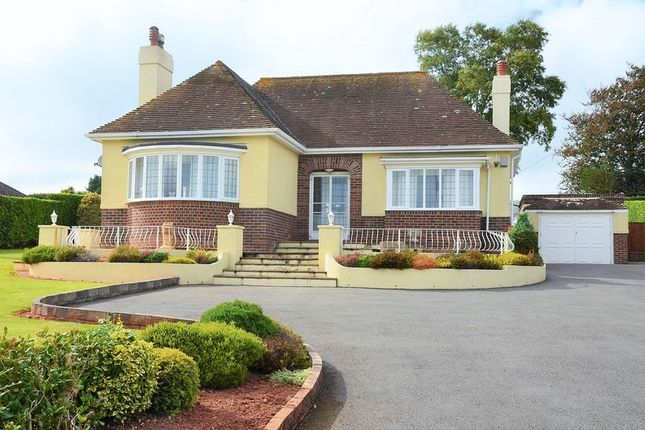 Thumbnail Bungalow for sale in Dartmouth Road, Paignton