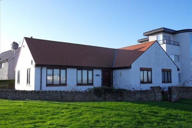 Thumbnail Bungalow to rent in Longstone Crescent, Beadnell, Chathill