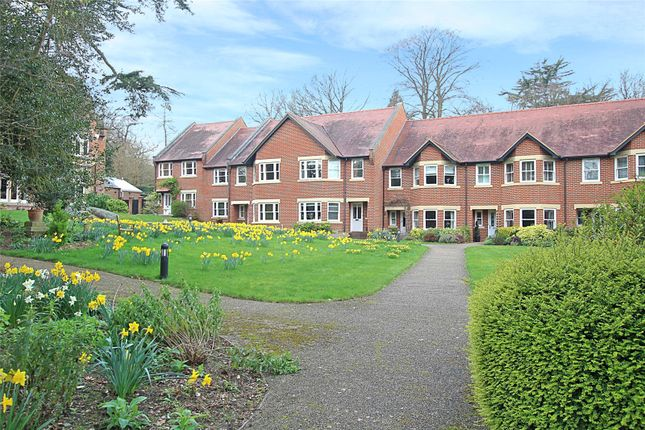 Thumbnail Terraced house for sale in Trevelyan Place, St. Stephens Hill, St. Albans, Hertfordshire