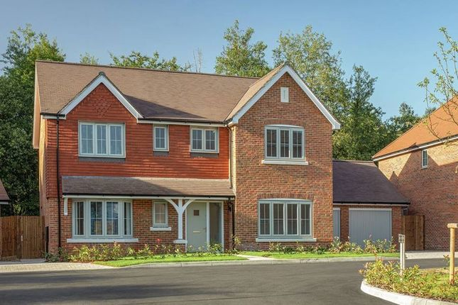 """Thumbnail Detached house for sale in """"The Osmore"""" at St. Legers Way, Riseley, Reading"""