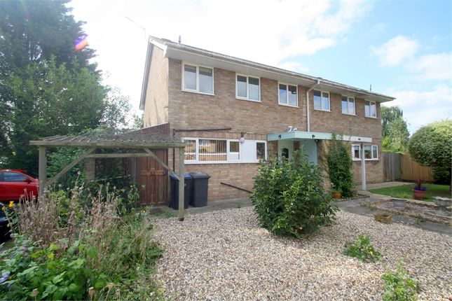 Thumbnail Semi-detached house for sale in Wendover Road, Staines-Upon-Thames, Surrey