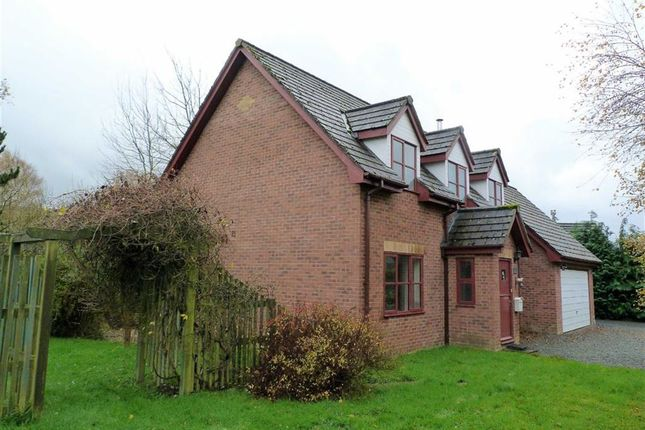 Thumbnail Detached bungalow to rent in Trefechan, 2, Dolybont, St Harmon, Rhayader, Powys