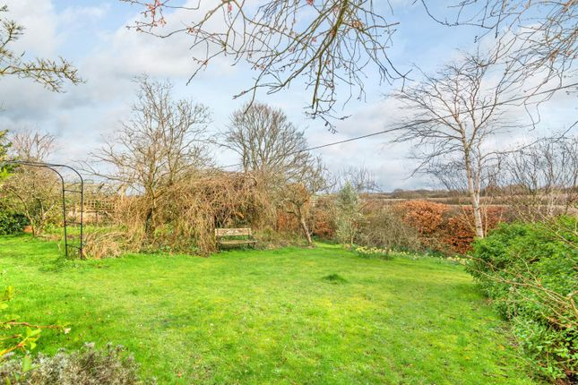 Garden of The Street, Selmeston, East Sussex BN26