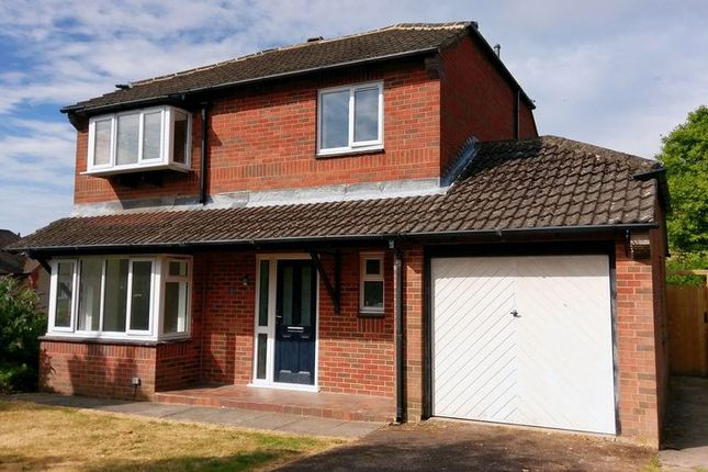 Thumbnail Detached house for sale in Hall Rise, Ashbourne