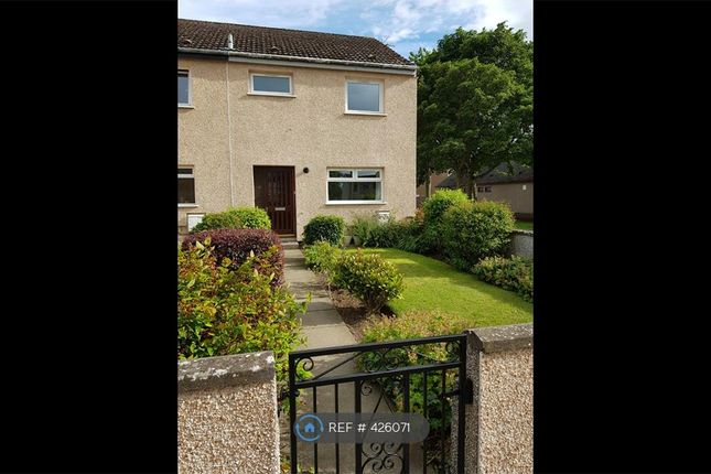 Thumbnail Semi-detached house to rent in Whitson Way, Montrose
