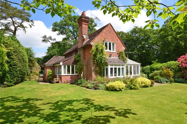 Thumbnail Detached house for sale in West Hill, Ottery St. Mary, Devon
