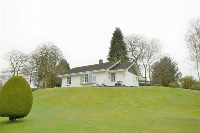 Thumbnail Detached bungalow for sale in Bungalow 1, Plas Talgarth, Pennal, Machynlleth