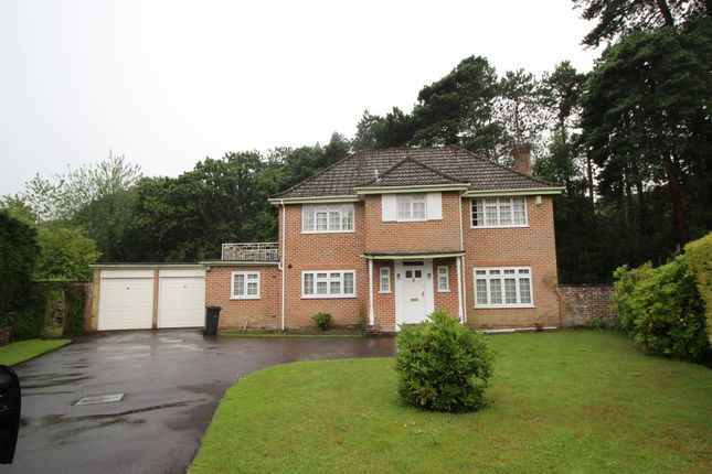 Thumbnail Detached house to rent in Wychwood Close, Meyrick Park, Bournemouth